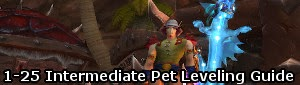 1-25 Intermediate Pet Leveling Guide