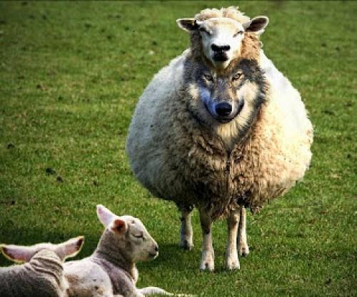 How A Pastor Guards His Flock Jim Murphy Sermon The Subtlety Of Satan Part 1