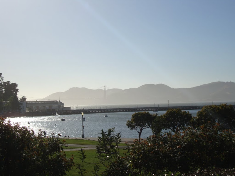 Sunshine on the Bay