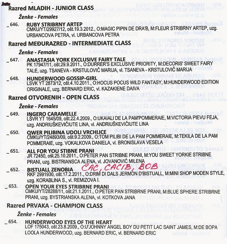 """""""Шоу-турне"""" Босния-Черногория-Хорватия-Литва 19.07-03.08.2013 104602399"""
