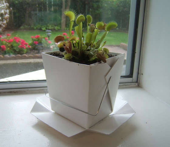 Image result for Cardboard Planter