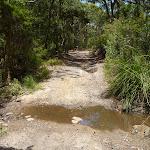 Creek crossing on the coastal walk in the Wallarah Pennisula (388442)