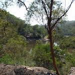 From Gibbergong track looking towards Bobbin Head (118840)