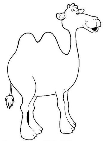 Pinto Dibujos: camello para colorear