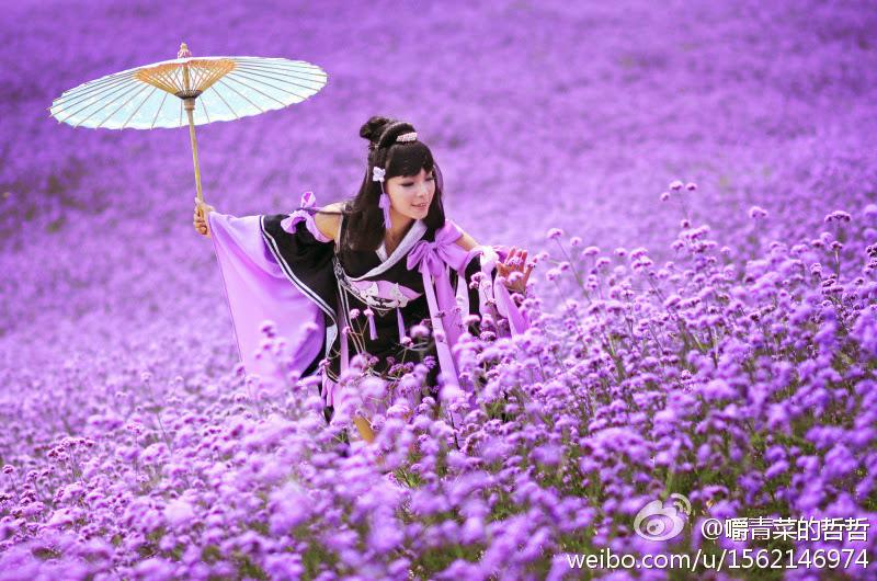 Nữ hiệp Vạn Hoa dạo chơi giữa rừng hoa - Ảnh 2