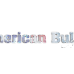 AmericanBullyNews photos, images