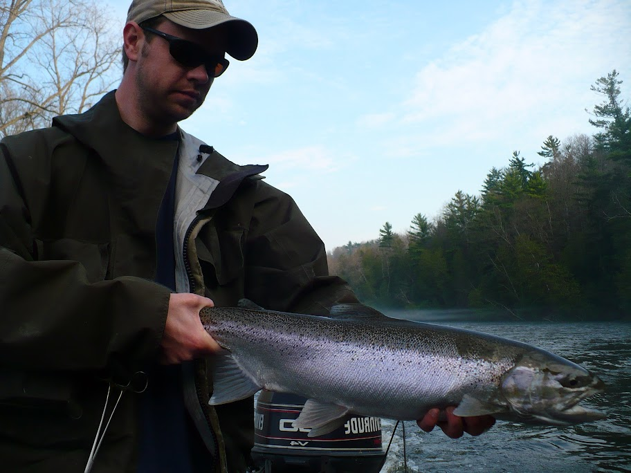 steelhead fishing the muskegon river