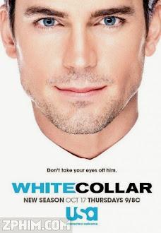 Cổ Cồn Trắng 5 - White Collar Season 5 (2013) Poster