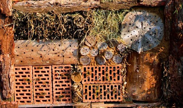 Insektenhotel Selber Bauen Bauanleitungen Tauschgartenforum