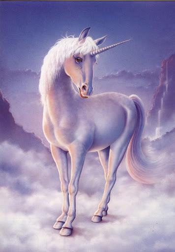 unicorn%252520%2525281%252529.jpg