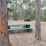 Banksia picnic area (190832)
