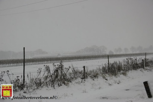 eerste sneeuwval in overloon 07-12-2012  (5).JPG