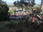 So I leaned my bike on a tree and watched Brandi start the show