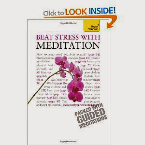 Beat Stress With Meditation A Teach Yourself Guide Teach Yourself Philosophy And Religion