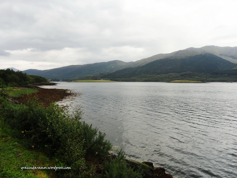 - Passeando até à Escócia! - Página 15 DSC03220