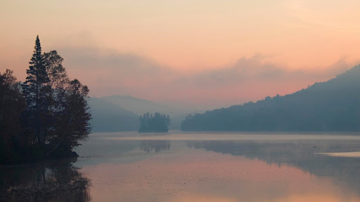 Misty Marsh.jpg