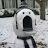 Blackegg 13 avatar image