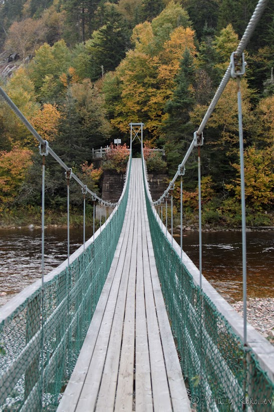 Bridge over the Big Salmon River