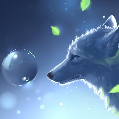 Naddi Wolf