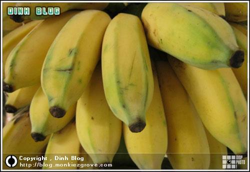 กล้วยพันธุ์พระราชทาน