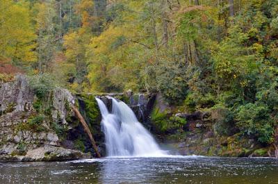 Abrams Falls