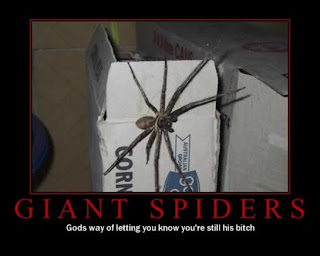 motivational giant spiders gods way of letting you know you are still his bitch, motivational pictures giant spiders, giant spiders, motivational spiders, motivational giant spiders god, motivational god, motivational funny, funny motivational pictures, gods way of letting you know you are still his bitch