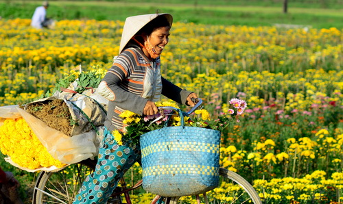 Những bài thơ mùa Xuân và Mẹ, ngày Tết nhớ Mẹ hay nhất