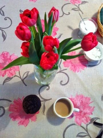 tulips, red, punainen, tulppaanit, kukat, kevät, spring, vase, kahvit, coffee,  maljakko