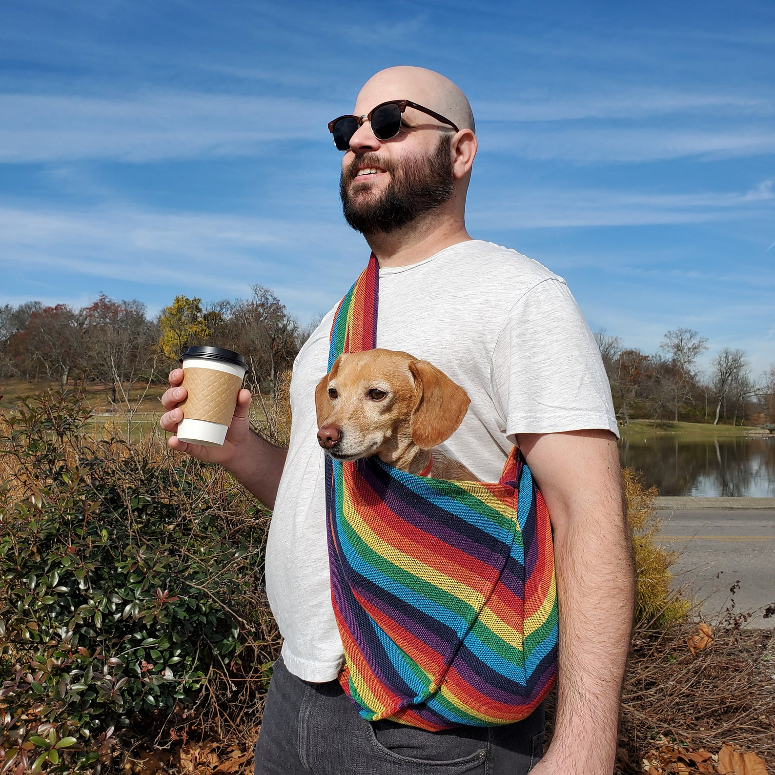 Person in sunglasses holding a warm to-go beverage wearing a rainbow dog sling with a small yellow dog in it.