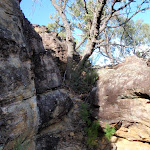 Near the top of Pisgah Rock (143919)
