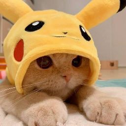 Jane Chai