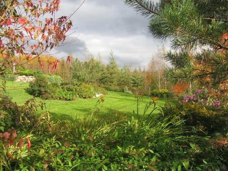 Syksyinen puutarha