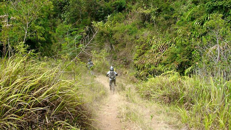 Setelah keluar dari hutan pinus, kami berhadapan kembali dengan semak dan tanahnya yang kering berdebu.