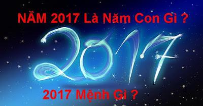 Nam 2017 la nam con gi