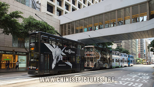 Hong Kong Central Buses Line up