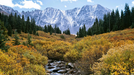 Mayflower Gulch, Arapahoe National Forest, Colorado.jpg