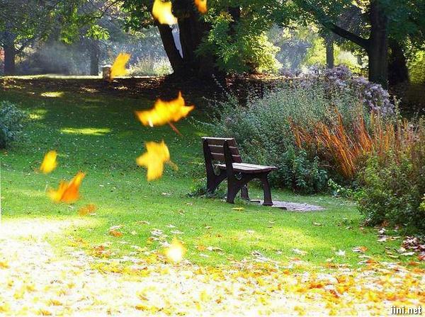 Tình thơ gió mùa Heo may