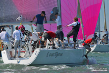 J/109s sailing in J/Cup