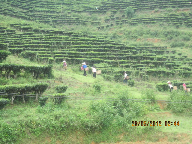Tour from Yen Bai to Sapa - http://www.vietnamvoyages.ca