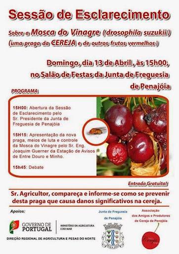 Sessão de esclarecimentos sobre a mosca do vinagre - Penajóia