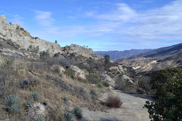 White Ledge Canyon