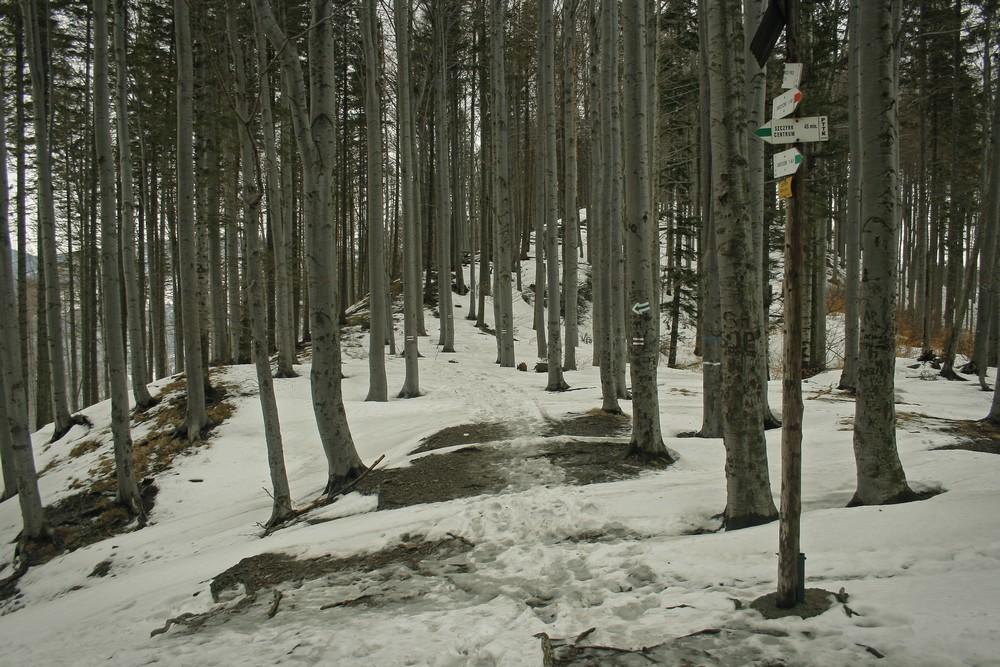 Przełęcz Becyrek