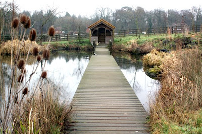 Pond at The Pig restaurant and hotel in the New Forest England