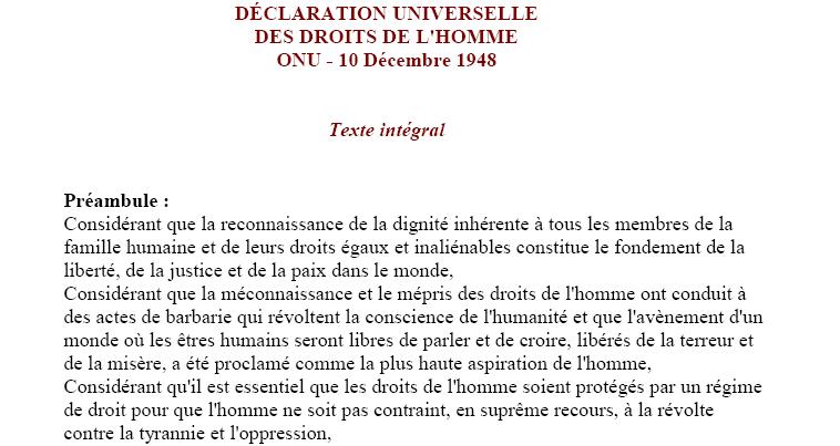 cairo declaration of human rights pdf