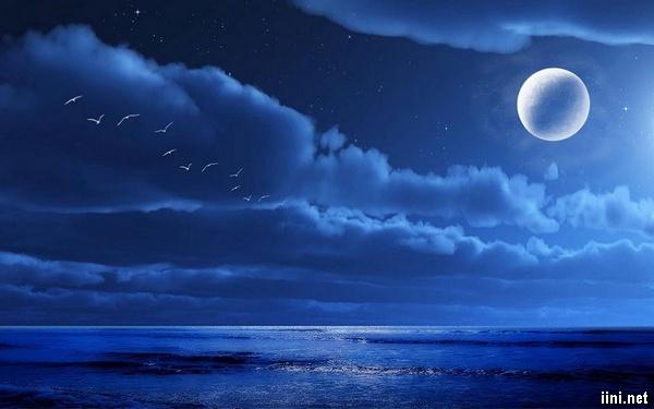 ảnh trăng và biển