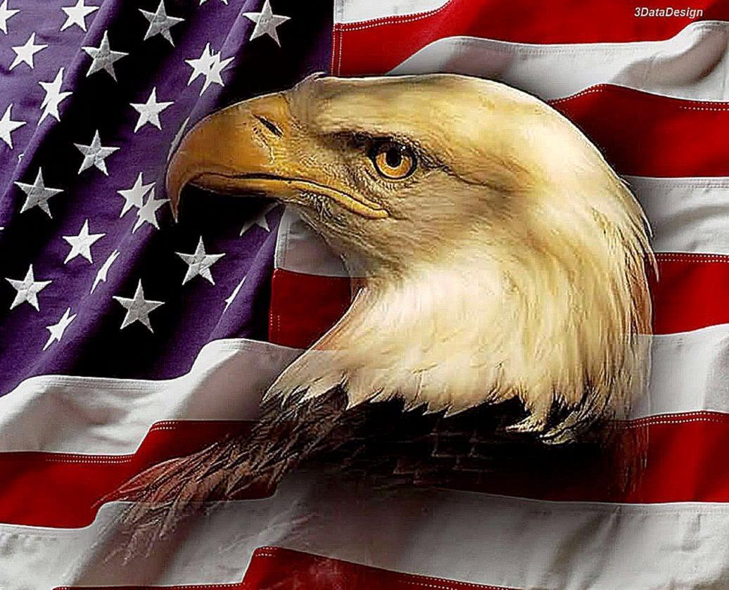 Best Free Hd Wallpaper Patriotic Eagle Wallpapers Free