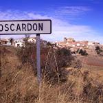 Moscardon