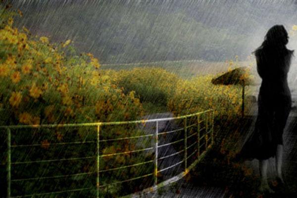 tháng 7 mưa buồn