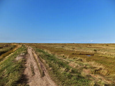 Defence banks reduced in height at Cley
