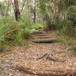 Steps on Graves Walk (227239)